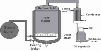 Indian Steam Distillation Plant