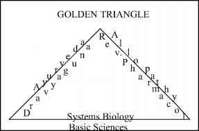 Golden Triangle Approach